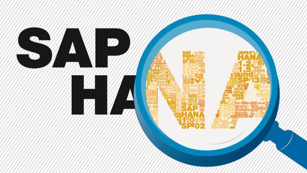 מלם תים (Malam Team) העלתה לאויר בהצלחה מערכת SAP S/4 HANA בויסוצקי